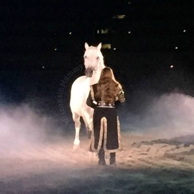 Medieval Times Chicago Review