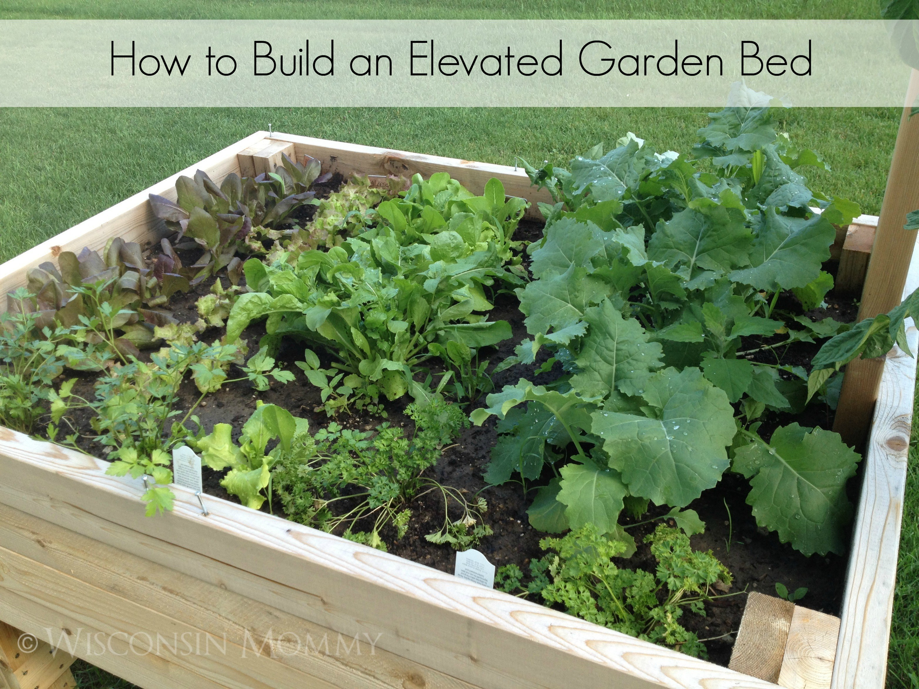 Build your own elevated raised garden bed - How to build a raised bed garden ...