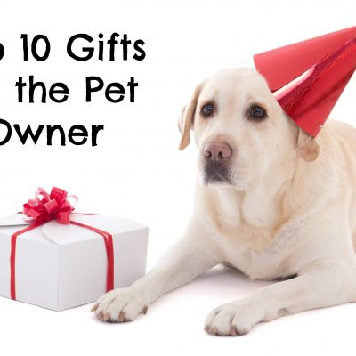 Top 10 Gifts for the Pet Owner