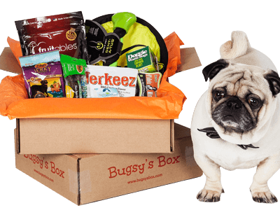 Bugsy's Box Review – Subscription Box for Dogs