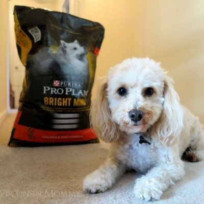 Purina ProPlan #BRIGHTMIND for Senior Dogs