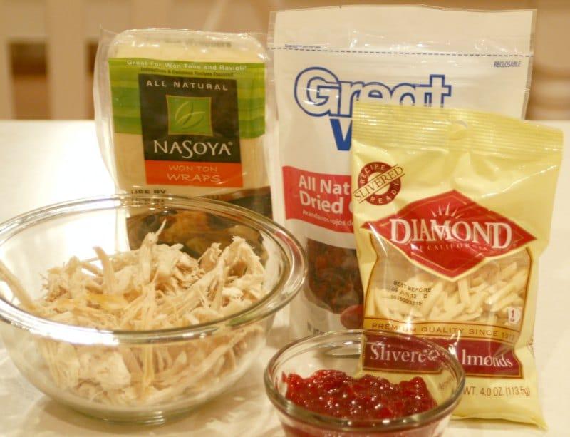 Thanksgiving leftovers wonton ingredients