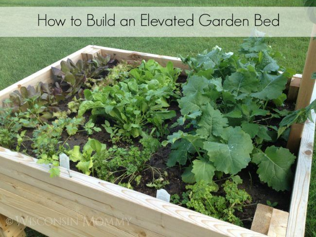 How to Build an Elevated Bed Garden #DIY #Gardening