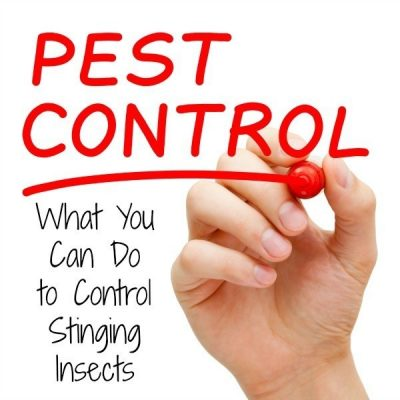 Home Pest Control for Stinging Insects