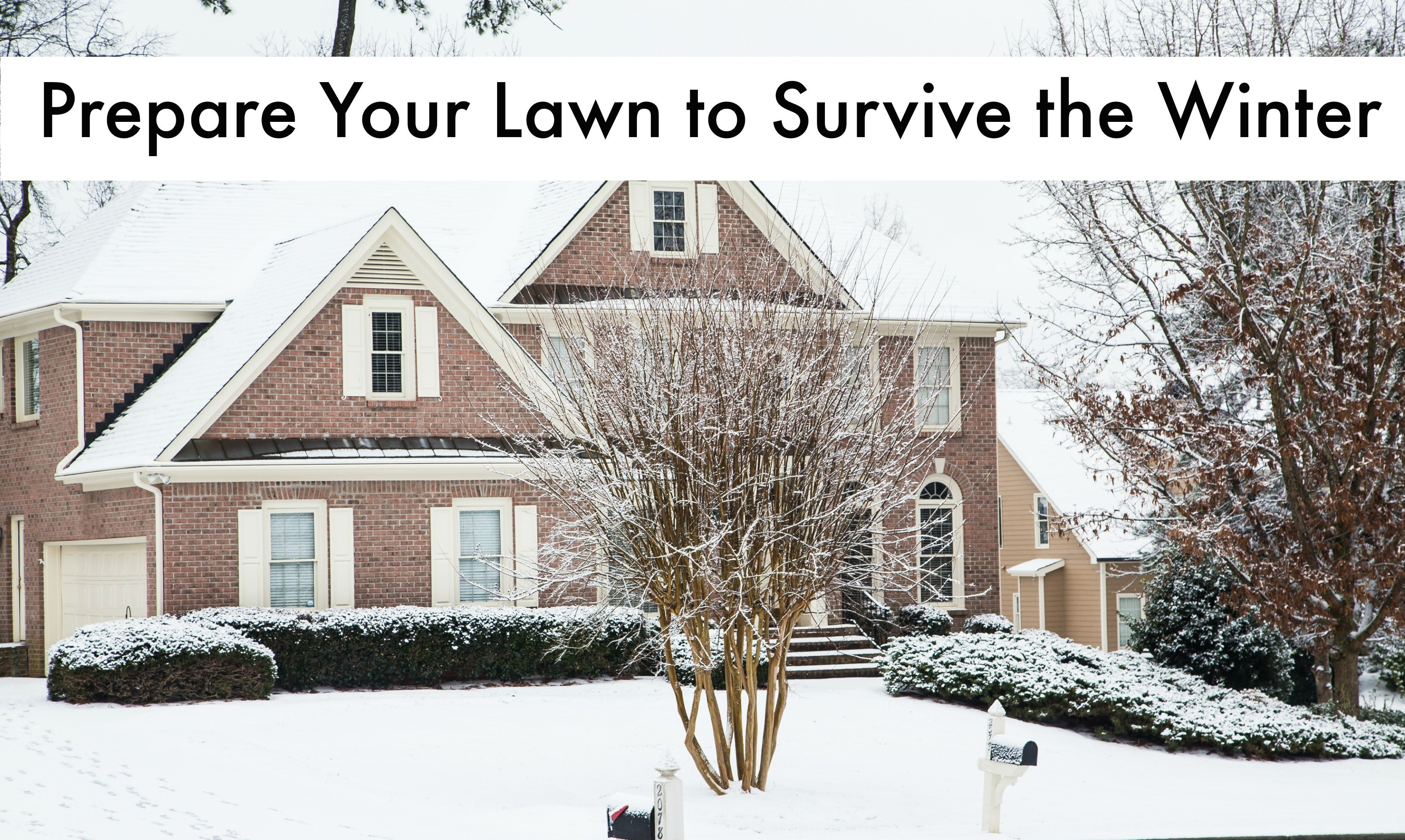Prepare Lawn For Winter winter lawn care: what you need to know from trugreen | wisconsin