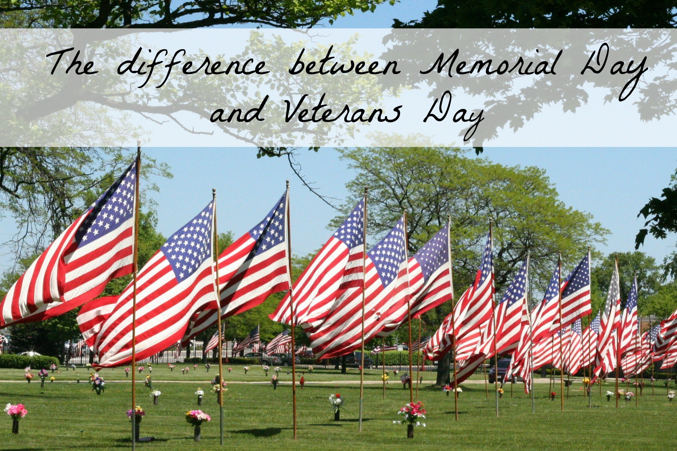 1bbc6aea6b The Difference Between Memorial Day and Veterans Day
