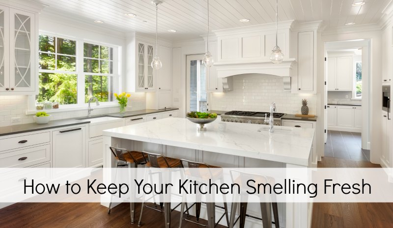 How To Keep Your Kitchen Smelling Fresh Wisconsin Mommy