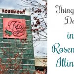 Things to Do in Rosemont Illinois