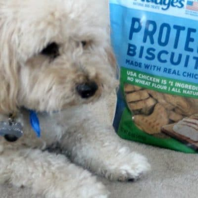 Treat Your Furry Family with Nudges®
